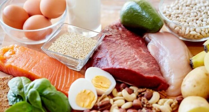protein per meal