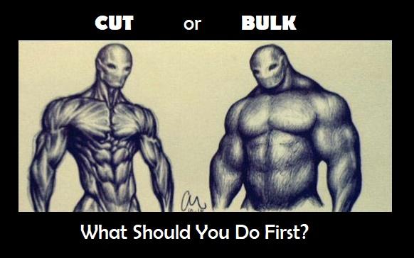Cut Or Bulk Macros Inc